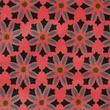LS_geometric fluo
