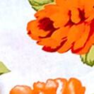fiori_arancio_giap