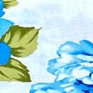 fiori_azzurri_giap